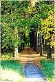 Городской парк - panoramio - Андрей Александрович….jpg