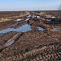 Граница Свердловской и Тюменской областей - panoramio.jpg