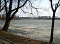 Замкавае возера недалёка ад Нясвіжскага замка - panoramio.jpg