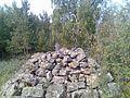 Куча камней - panoramio.jpg