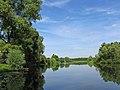Лизогубівський (Седнівський) парк Ріка Снов у Седневі 16.jpg