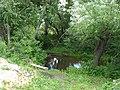 На берегу речушки.. - panoramio.jpg