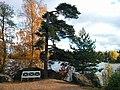 Парк Монрепо осенью.jpg