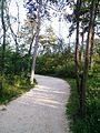 """Парк шума """"Гази Баба"""" 67.jpg"""