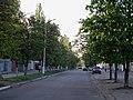 Пров. Героїв Бреста (Кременчук) (2.05.12) (3).jpg