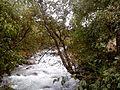 Река Джемагат 1.jpg