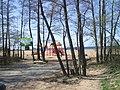 Сестрорецк СПб Дубковский пляж.JPG