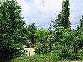 Солнечный. 4 июня 2013г. - panoramio (21).jpg