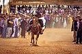 ألعاب الفنتازيا و الفروسية من الشرق الجزائري 8.jpg