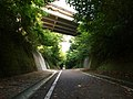 りんりんロード RINRIN Cycling Road - panoramio (1).jpg