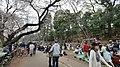 井の頭公園 - panoramio (45).jpg
