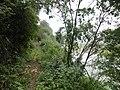 """咸宁""""一级保护""""之原生态孝子山正在面临破坏 - panoramio (1).jpg"""