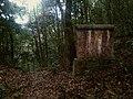 圆树凹珍稀植物保护小区 - Yuanshu'ao Endangered Plants Reserve - 2015.10 - panoramio.jpg