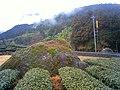 妙法寺裏の巨石 - panoramio.jpg