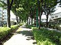矢崎町 - panoramio (29).jpg