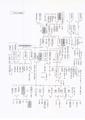 石坂家近世図.pdf