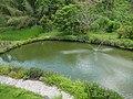 花蓮縣瑞穗鄉 瑞穗牧場 水池 Ruisui Ranch Pond(Ruisui,Hualien) - panoramio.jpg