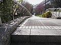 遊歩道 - panoramio (5).jpg