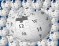 .wikipedia.png
