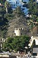 039 Torre de Cal Baró (Alella), des del Rost.jpg