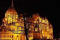 03 2019 photo Paolo Villa - F0197921 - Budapest - Parlamento - notte - luci - alberi - cupola - Neomedievalismo Neogotico.jpg