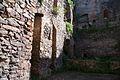 1049viki Ząbkowice Śląskie - ruiny zamku. Foto Barbara Maliszewska.jpg