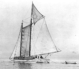 Historic photo of Alma under sail, taken about 1900