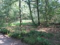 1e grafheuvel Bennekom (2).JPG