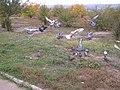 2005-2010. Птицы Донецка (C-740) 59.jpg