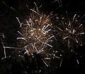 2010 07 14 bastille day fireworks 069 (4839486292).jpg