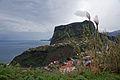 2011-03-05 03-13 Madeira 020 Faial.jpg
