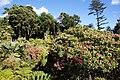 2011-03-05 03-13 Madeira 192 Monte, Jardim tropical Monte Palace.jpg