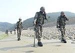 2015.7.14. 연평부대 - 지뢰탐지작전훈련 14th, July, 2015, ROK Marine YP Unit-Training to detect of mines (19756514482).jpg