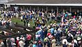 2017 Kentucky Derby IMG 20170506 122910 (34368879931).jpg
