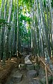 2019 Hōkoku-ji 03.jpg