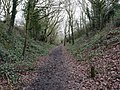 2021-01-29 Looking along Paston Way, Southern end of North Walsham to Knapton section, Norfolk.jpg