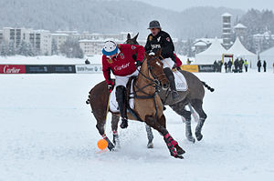 image of 30th St. Moritz Polo World Cup on Snow - 20140202 - Cartier vs Ralph Lauren 11