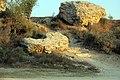 71-7100-100 - תל אשקלון - שביל החומה - לריסה סקלאר גילר (2).jpg