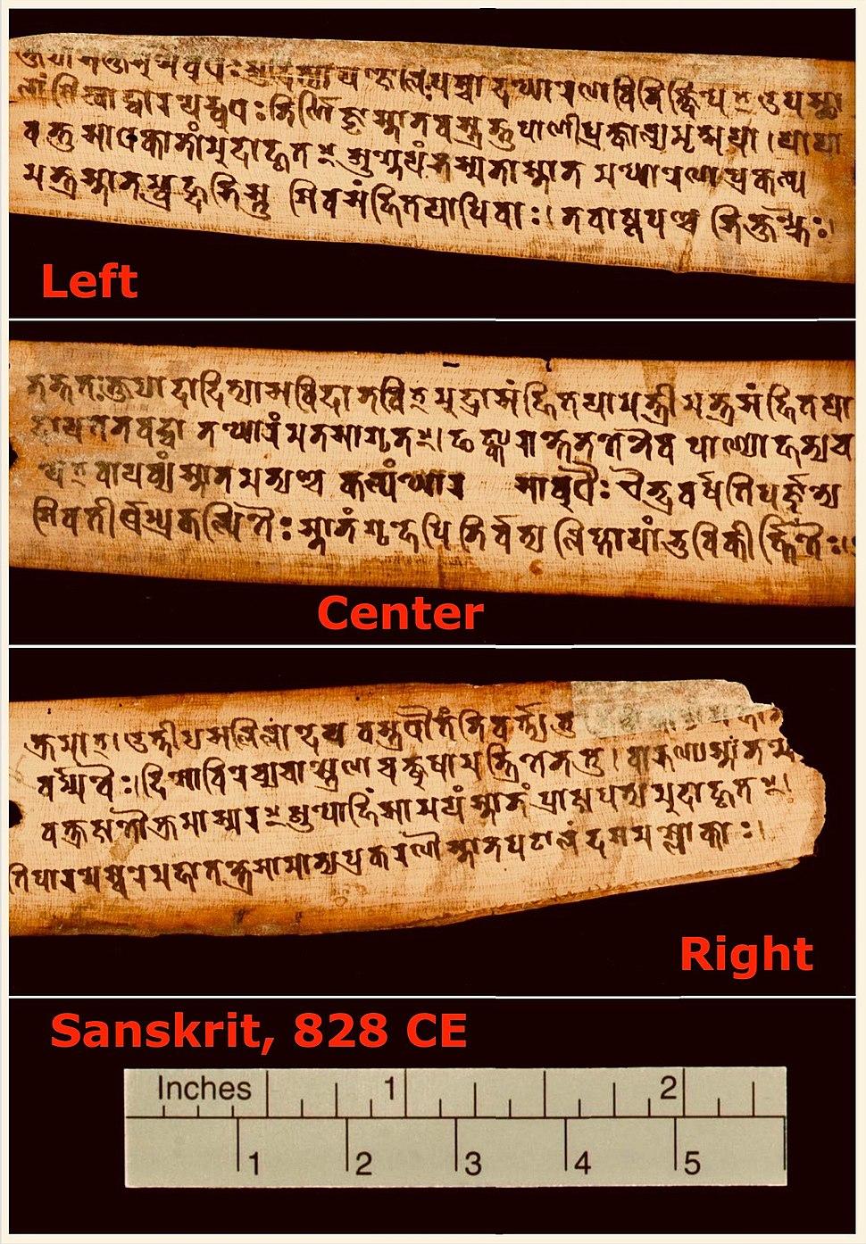 828 CE Sanskrit manuscript page, Gupta script, Nepal, Pārameśvaratantra (MS Add.1049.1)