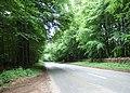 A436 between Adlestrop and Chastleton - geograph.org.uk - 181343.jpg
