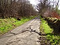 A815 - the old road - geograph.org.uk - 161164.jpg