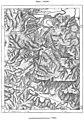 AFR V2 D330 Palestro and Gorges of the Isser.jpg