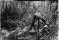 ASC Leiden - Coutinho Collection - 14 10 - Campada college on the northern frontline, Guinea-Bissau - Digging trenches - 1973.tif