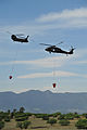 A U.S. Army CH-47 Chinook helicopter, left, assigned to the 4th Combat Aviation Brigade and a UH-60 Black Hawk helicopter assigned to the Colorado Army National Guard provide firefighting assistance for 130612-Z-WF656-006.jpg