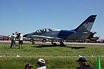 A civilian own L-39 in Australia.jpg