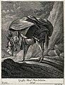 A large mule carrying a heavy load. Etching by J. E. Ridinge Wellcome V0021152ER.jpg