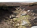 A moorland watercourse - geograph.org.uk - 786944.jpg