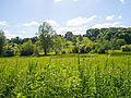 A nice sunny day in Spring. (8922648980).jpg