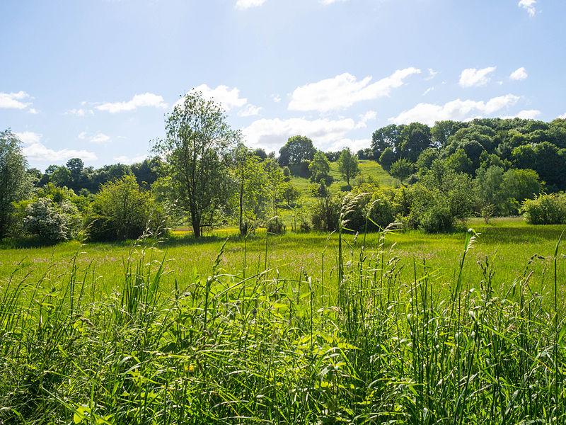 Overbroek-Egoven natuurreservaat in Gelinden, Sint-Truiden