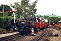 A train arrives at Llanfair Caereinion - geograph.org.uk - 1572386.jpg